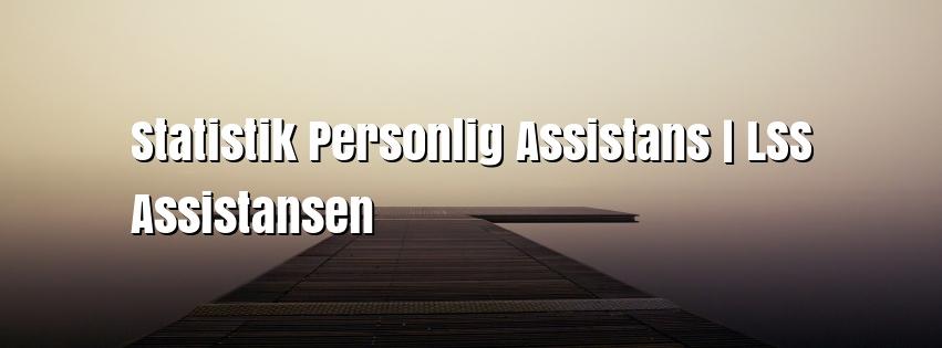 Statistik Personlig Assistans | LSS Assistansen